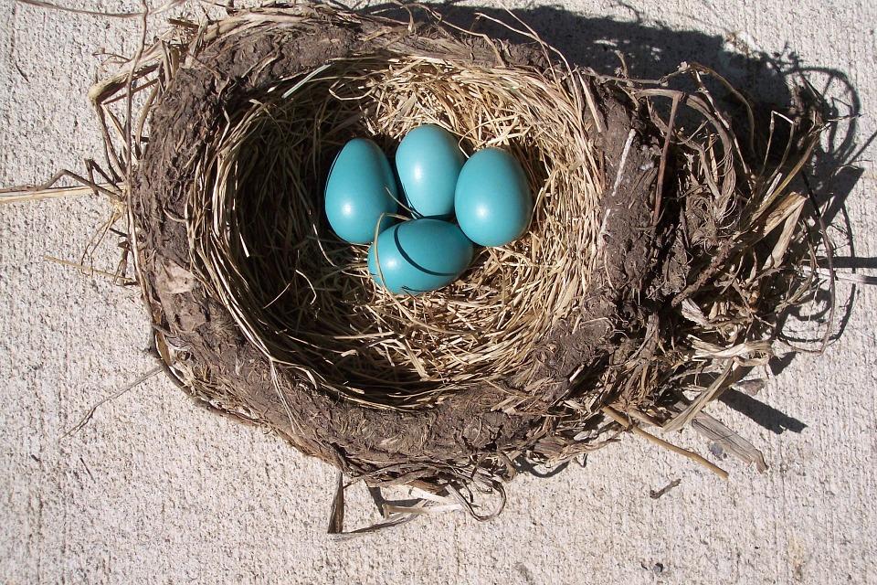 Podnikatelské inkubátory: Slyšeli jste už o nich?