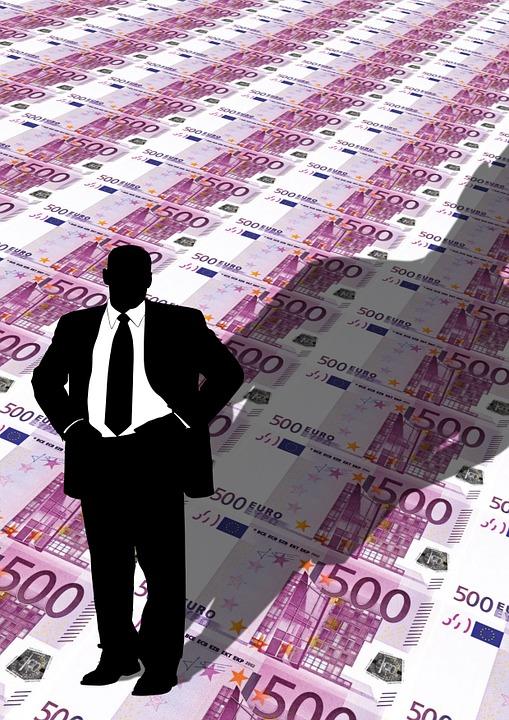 Role investora ve firmě může být taková, že jenom přinese peníze.